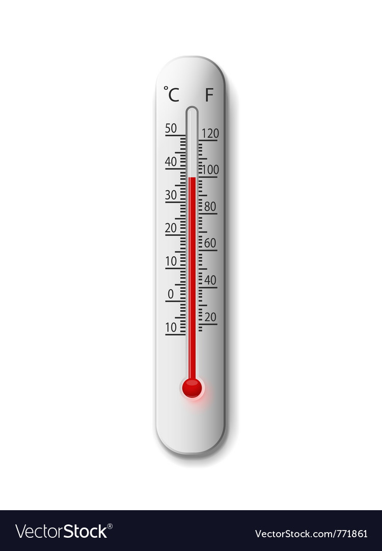 Thermometer on a white vector image
