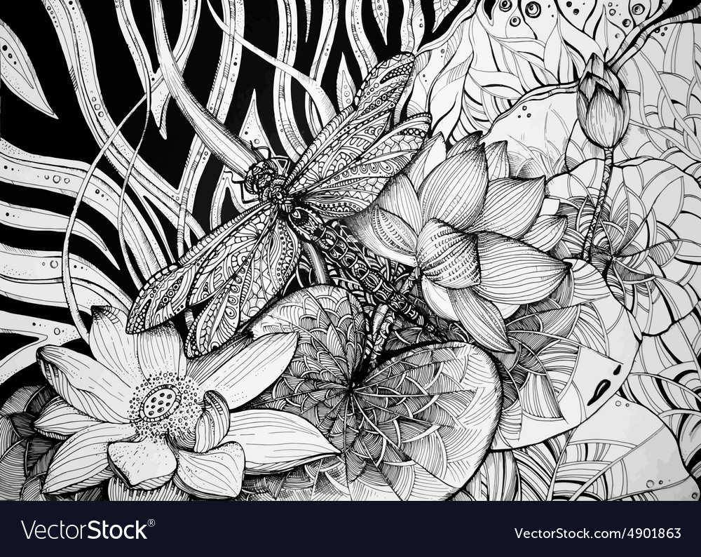 Beautiful graphic background with lotuses and vector image