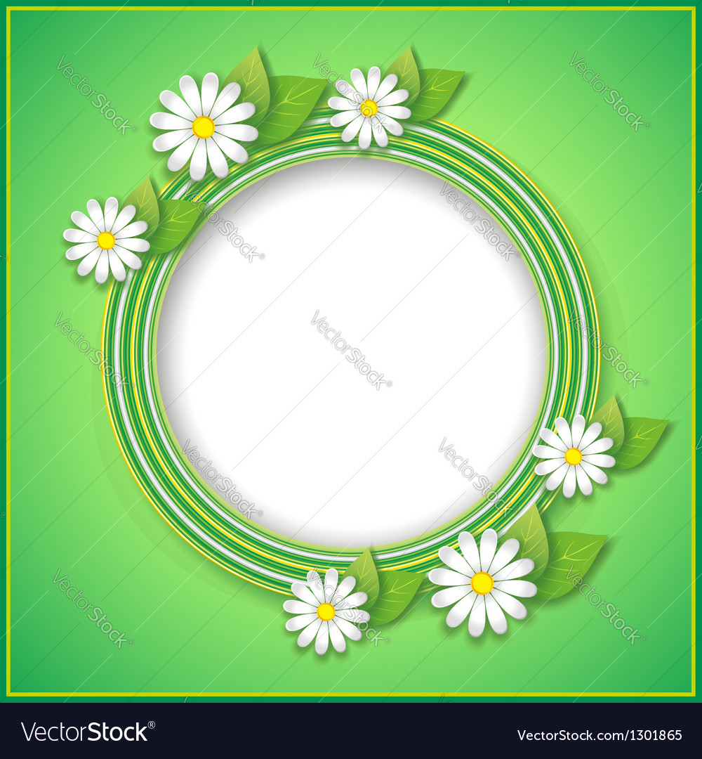 Spring or summer background with decorative flower vector image