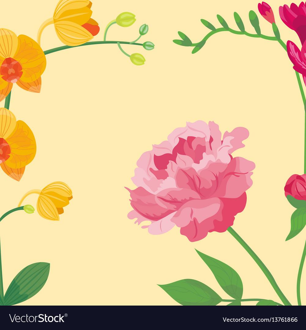 Cartoon petal vintage floral background vector image