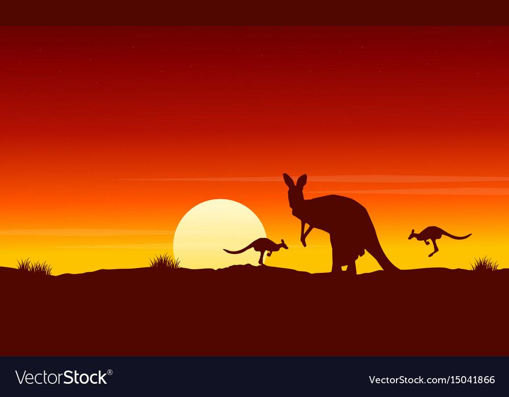 Silhouette kangaroo at sunrise landscape vector image