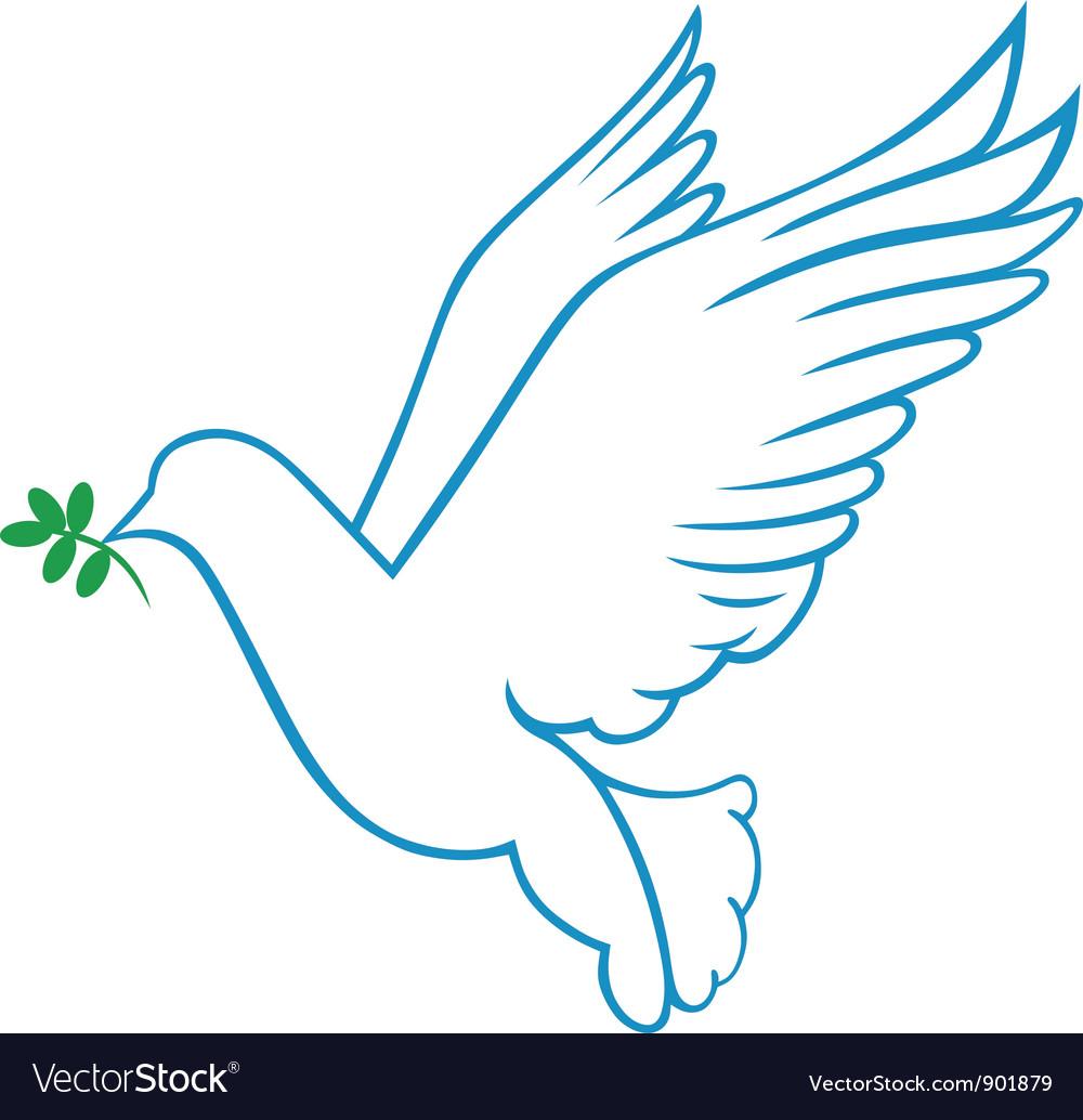 Dove symbol vector image