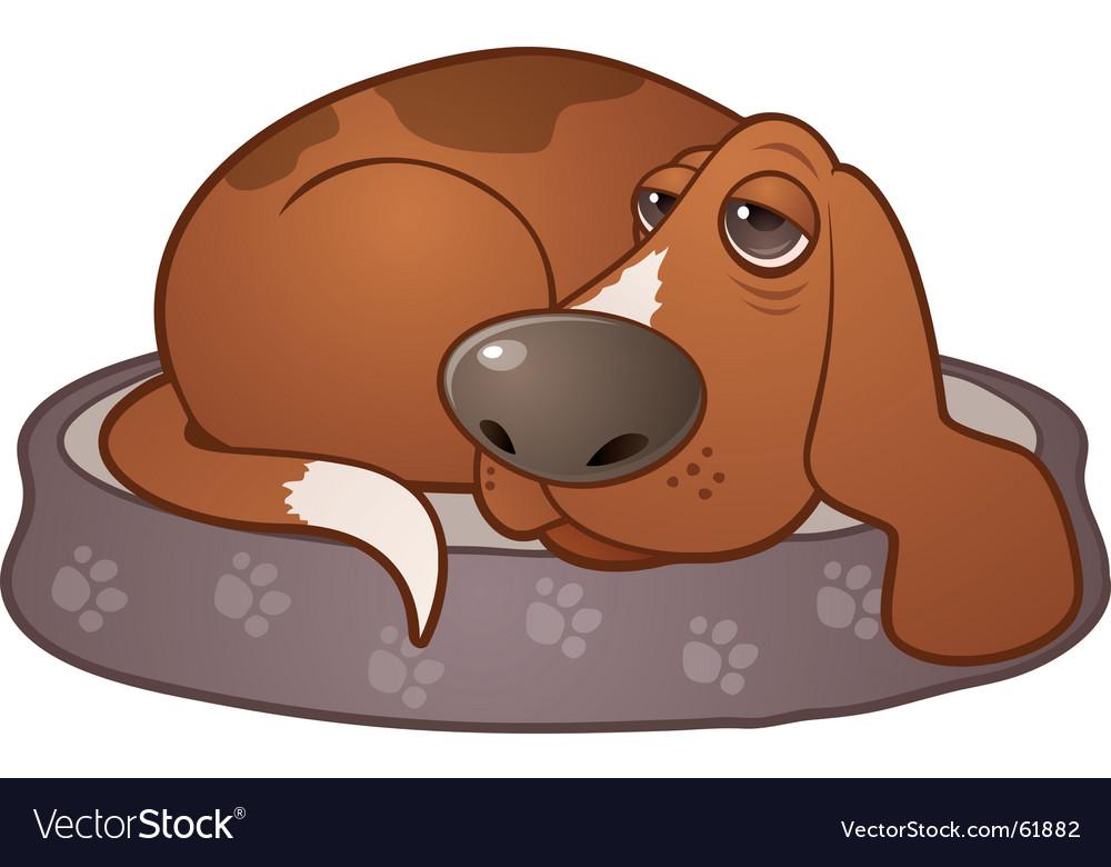 Sleepy hound dog vector image