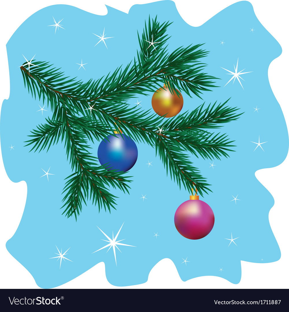 Christmas tree branch vector image