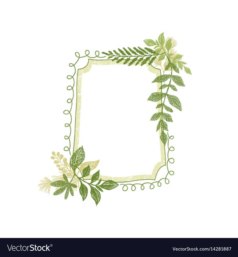 Frame with greenery plant leaves decoration vector image