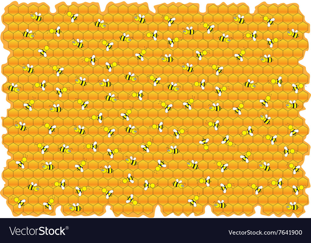 Bumble bees honey background vector image