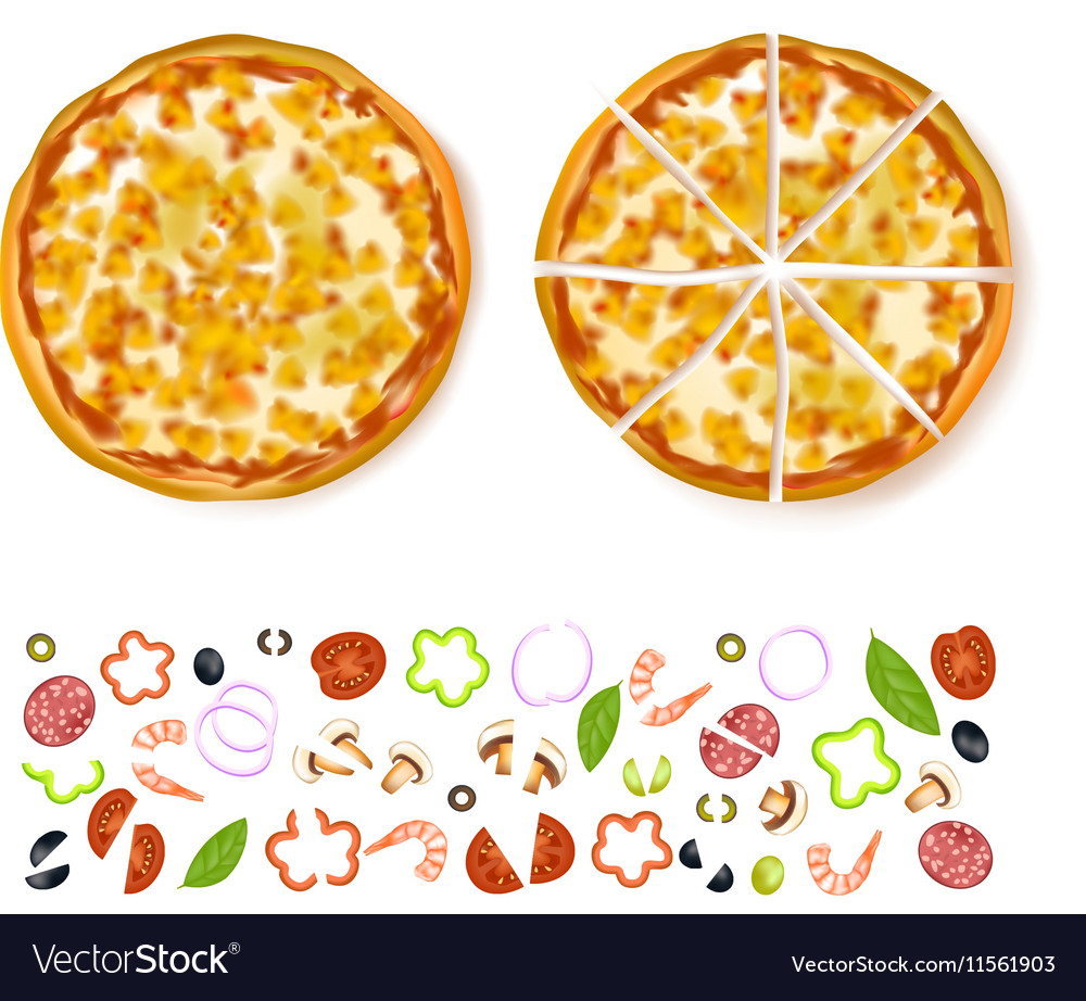 Sliced Empty Pizza Composition vector image
