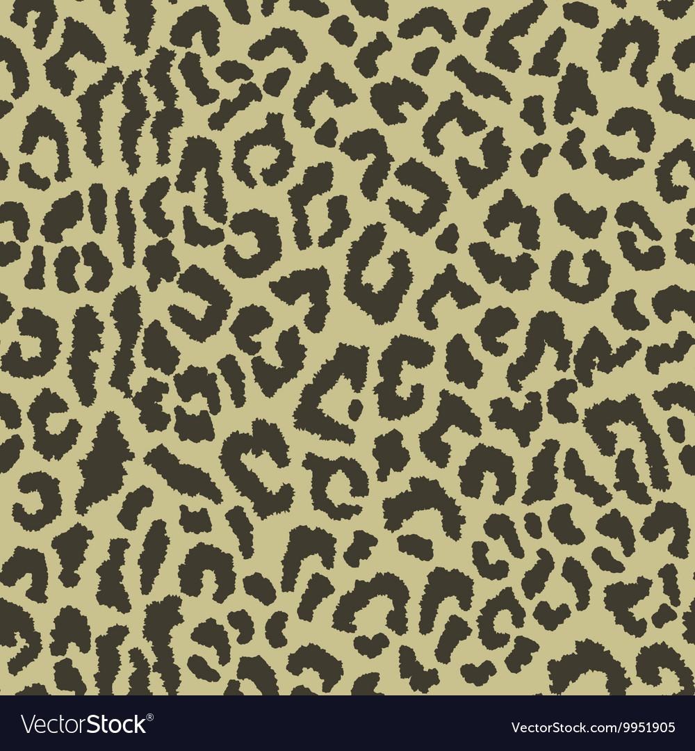 Eopard spots vector image