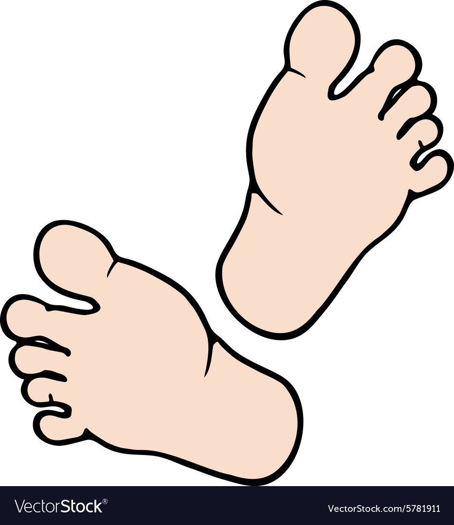 Cartoon feet vector image