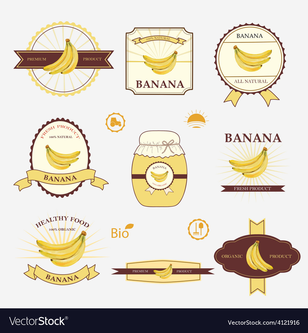 Banana Set Of Label Design And Templates Vector Image  Label Design Templates