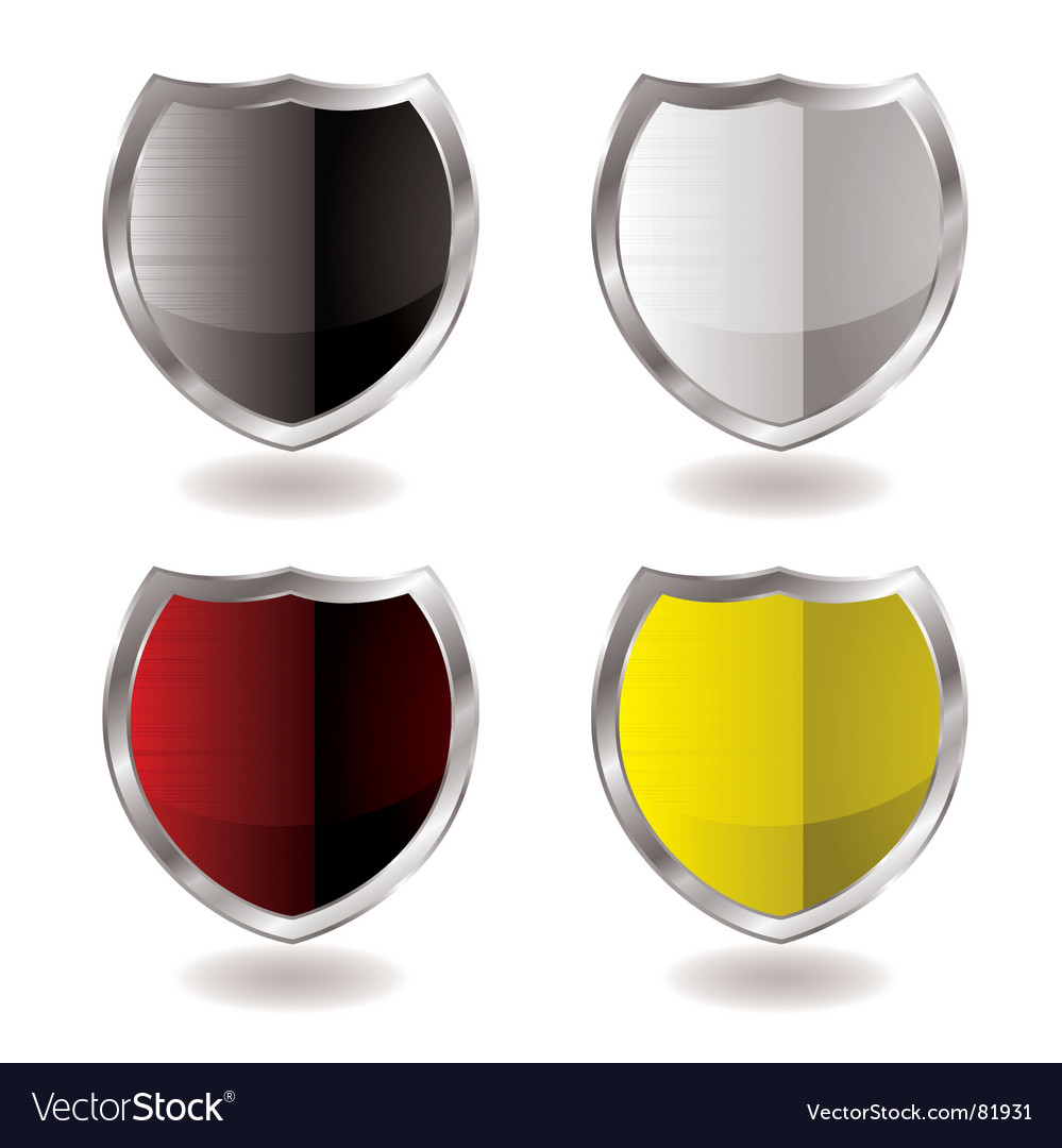 Shield reflection vector image