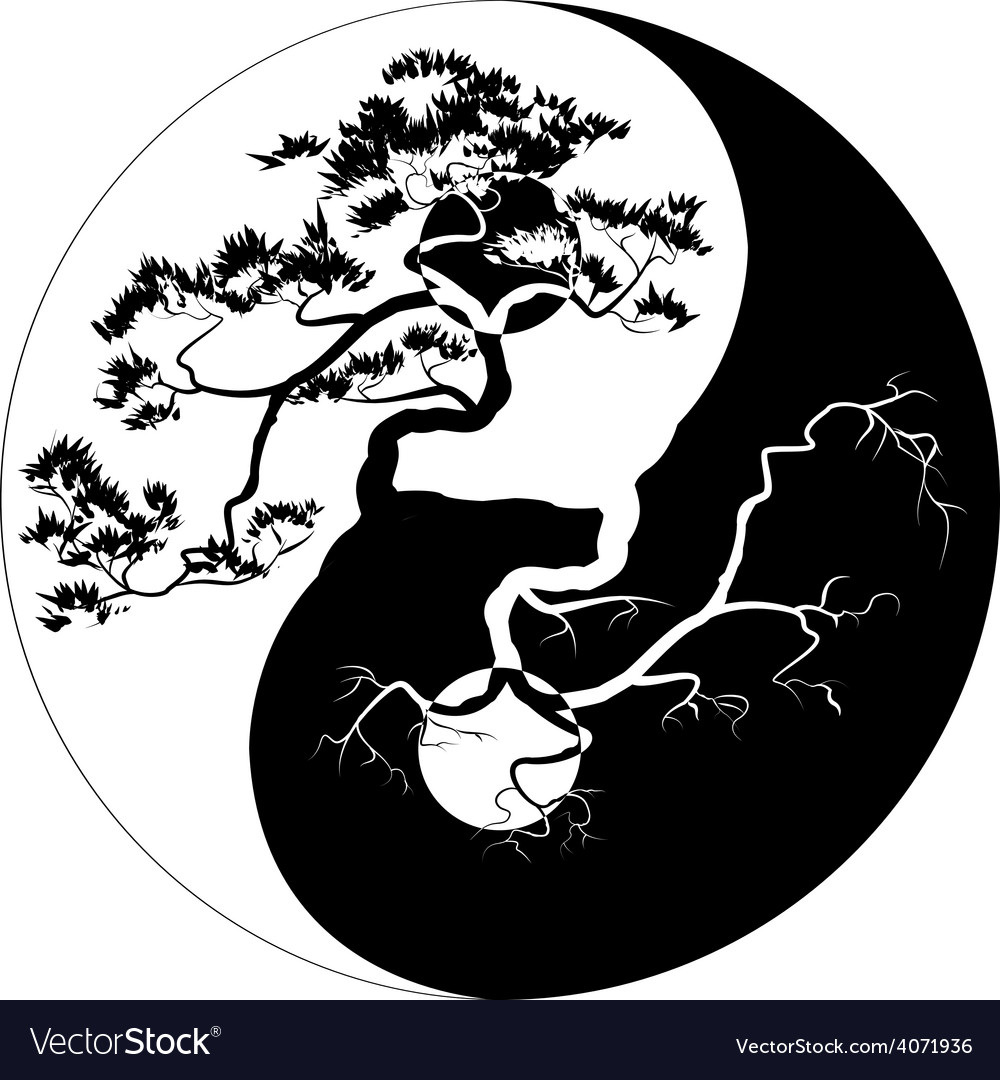 Yin Yang Bonsai vector image