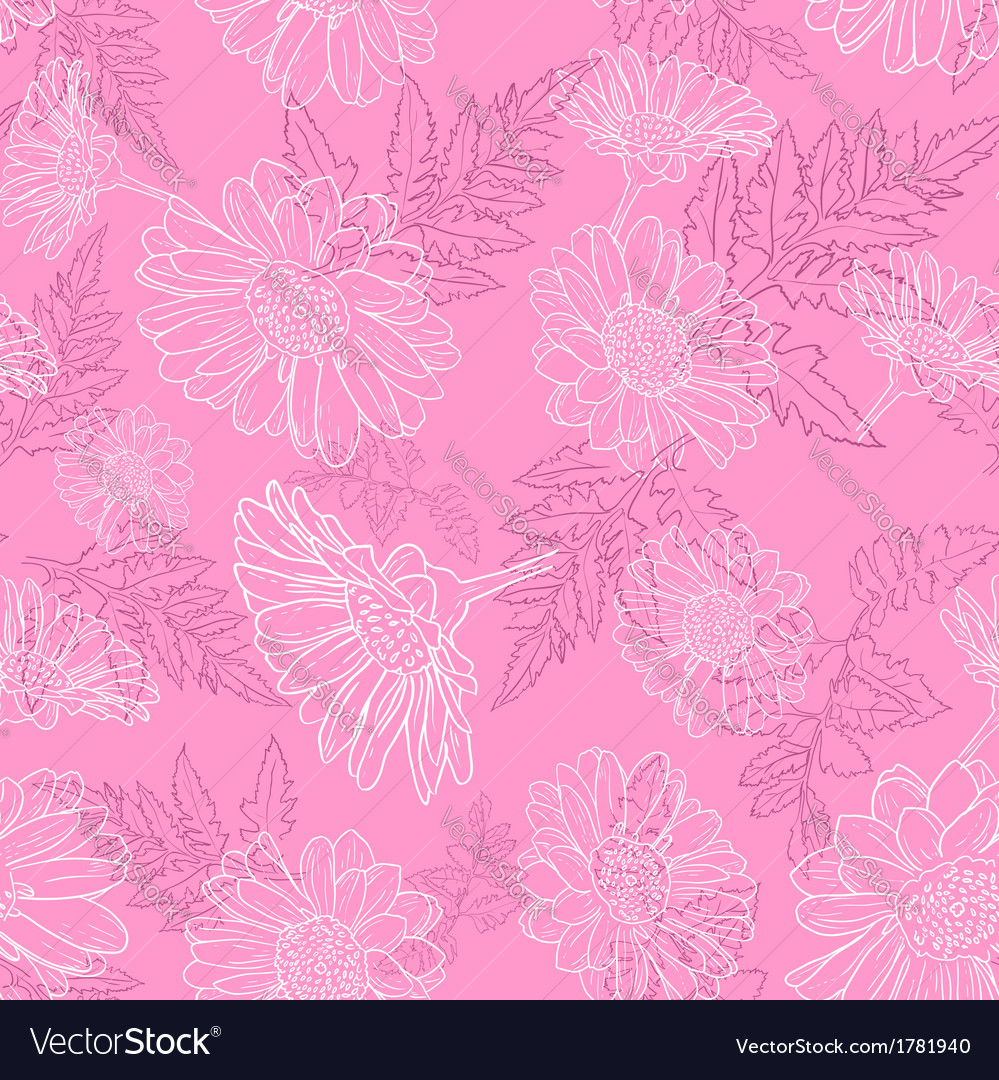 Seamless background with daisy flowers vector image