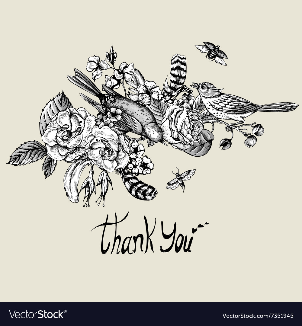 Thank you hand drawn greeting card royalty free vector image thank you hand drawn greeting card vector image kristyandbryce Gallery