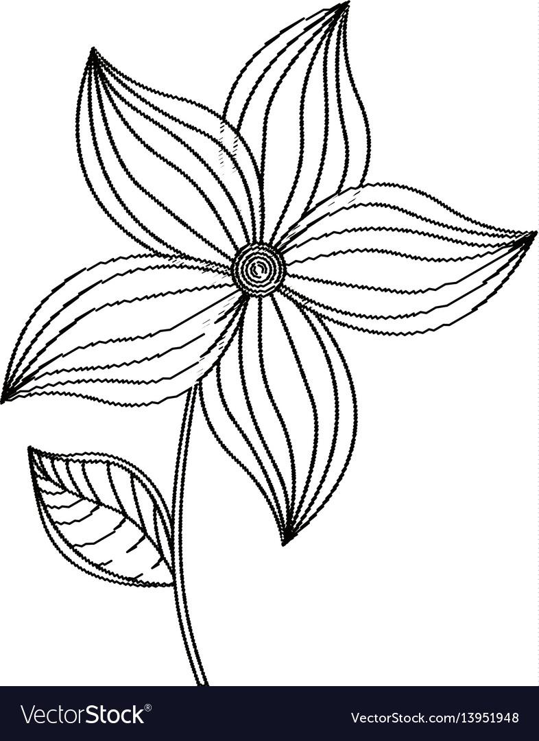 Flower ornament decoration sketch vector image