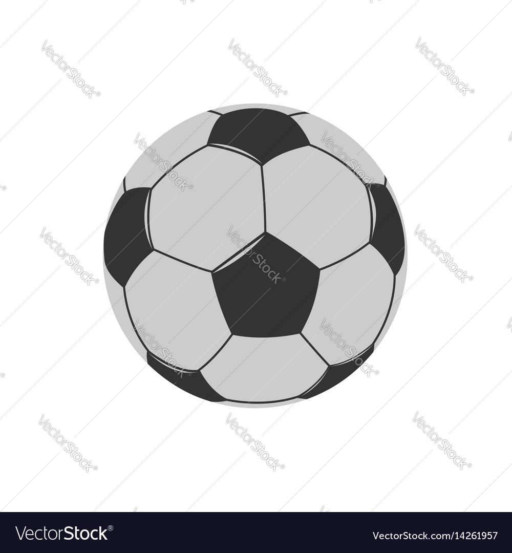 Football soccer ball vector image