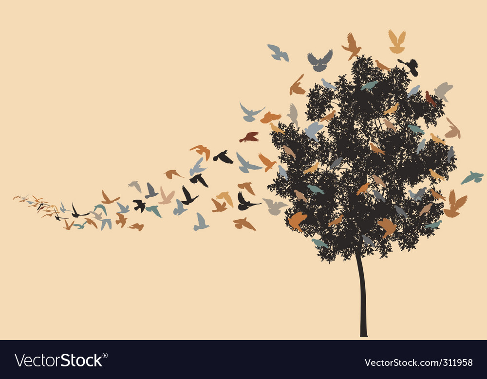 Home to roost vector image