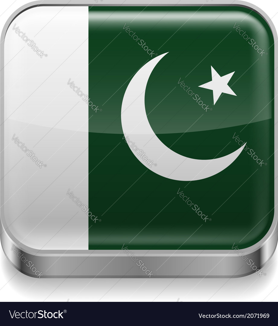 Metal icon of Pakistan vector image