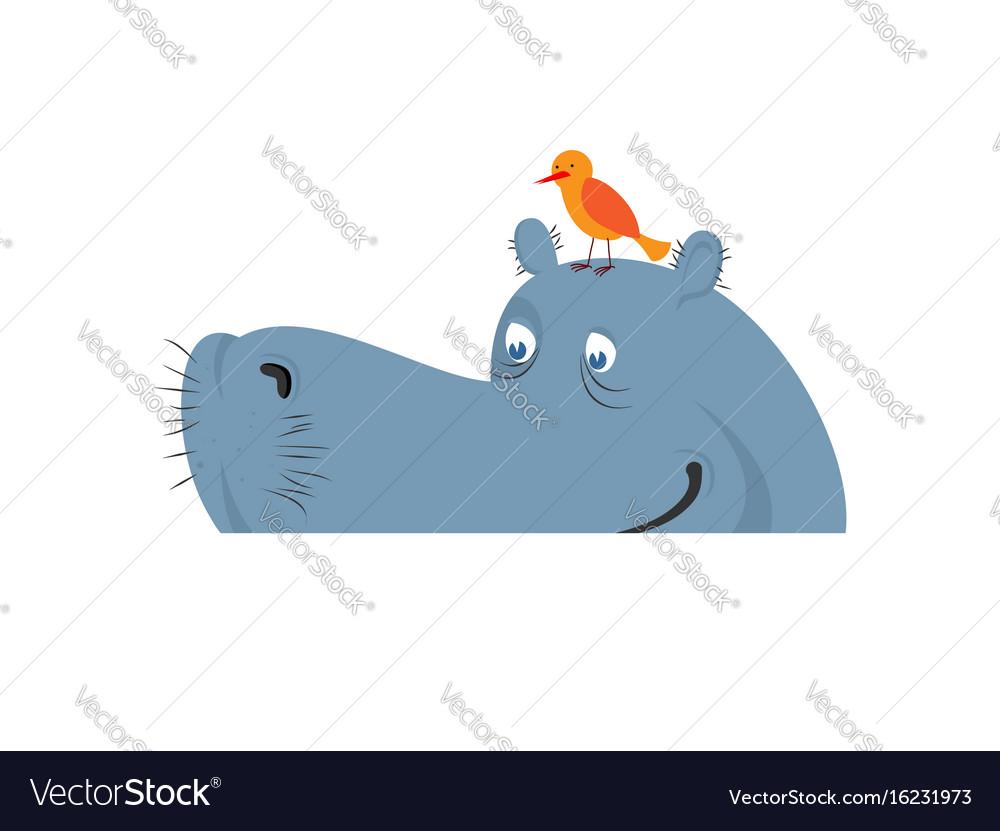 Hippo in water hippopotamus in river large animal vector image