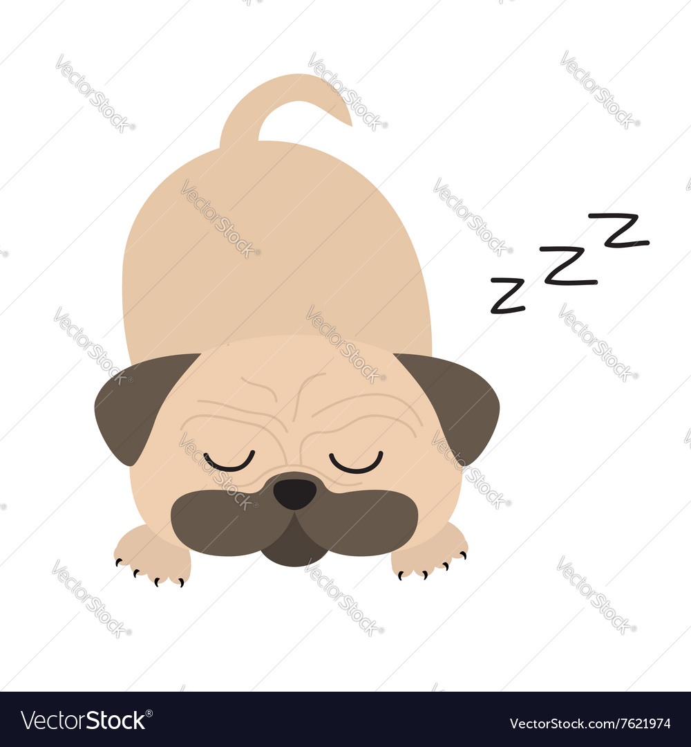 mops pug dog cute cartoon character flat design vector image
