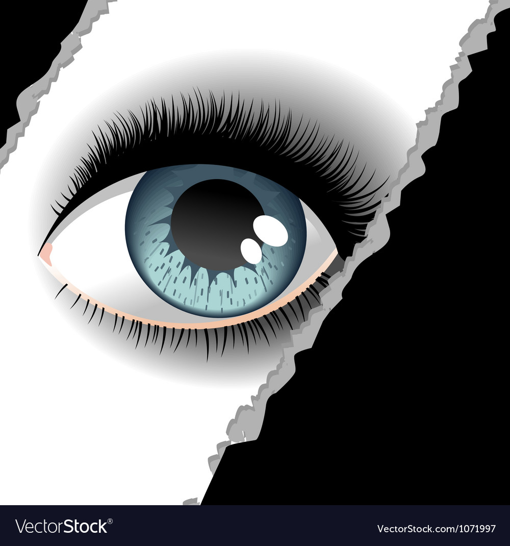 One eye 2 vector image