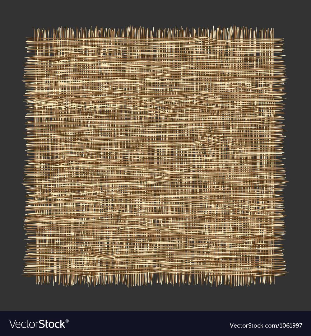 Organic weave pattern vector image