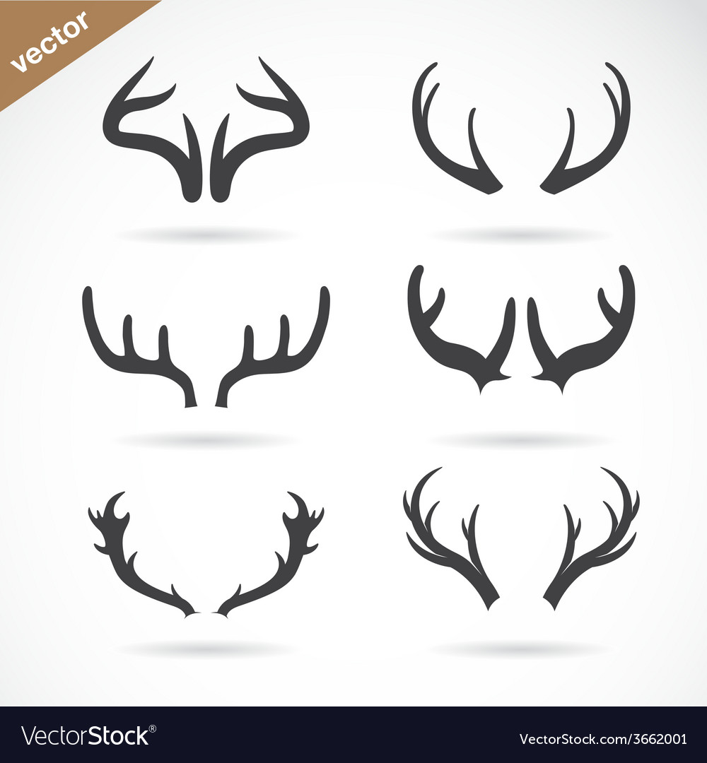 Antler icon set vector image