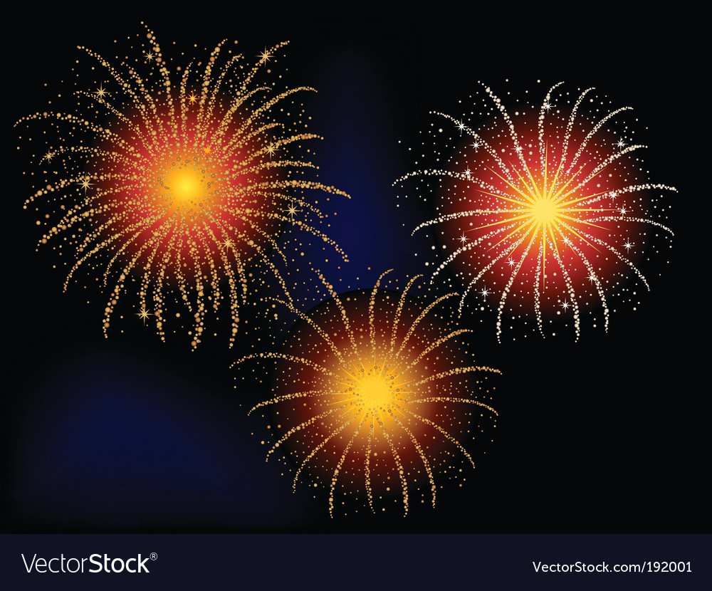 Firework explosion vector image