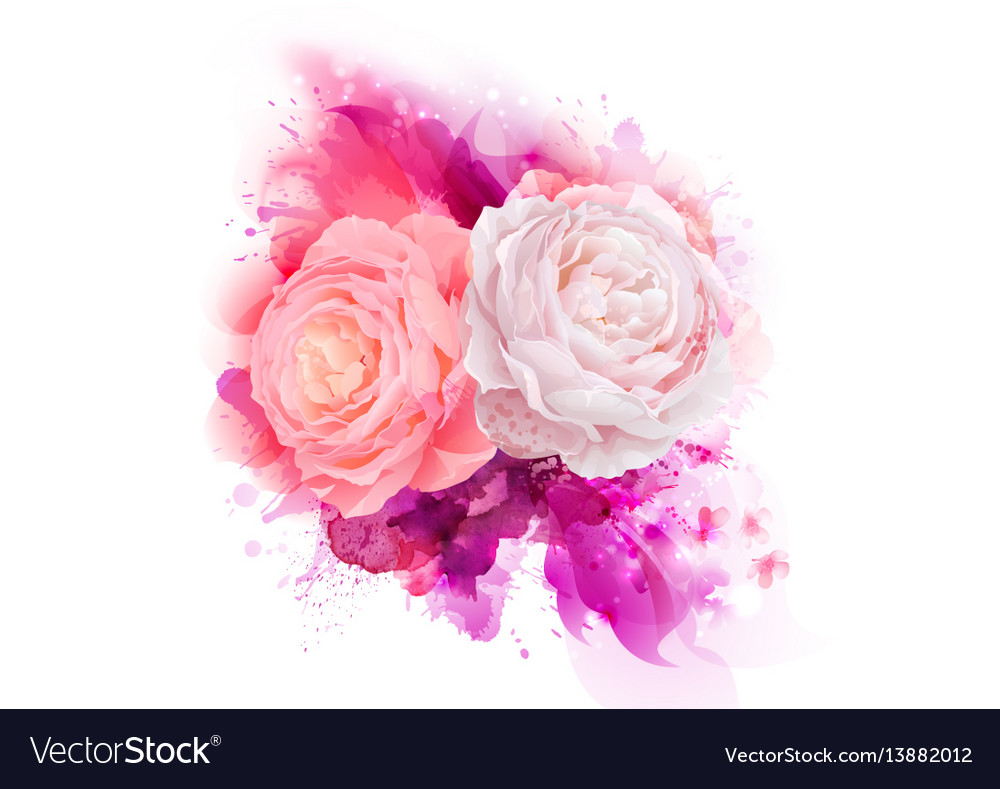 Elegance flowers bouquet of pink color roses vector image