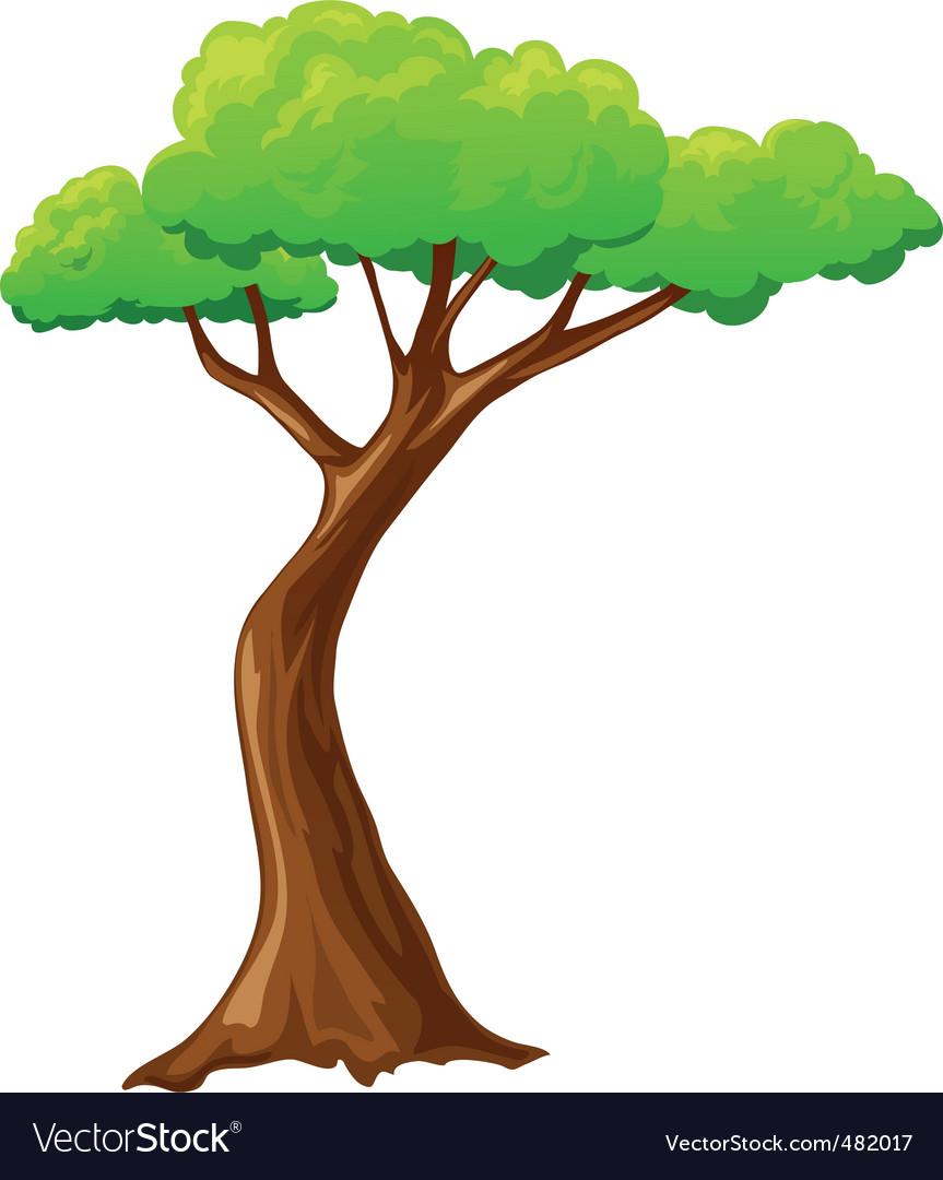cartoon tree royalty free vector image vectorstock
