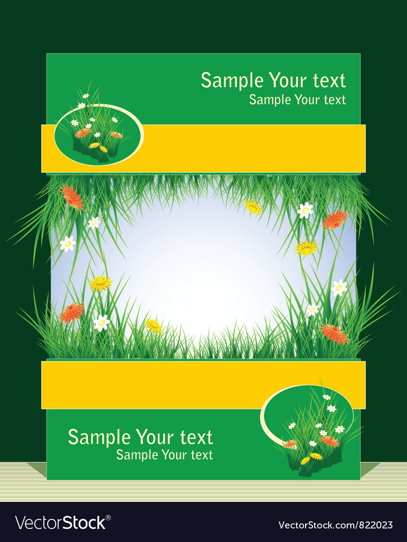 Frame with grass and field flowers vector image