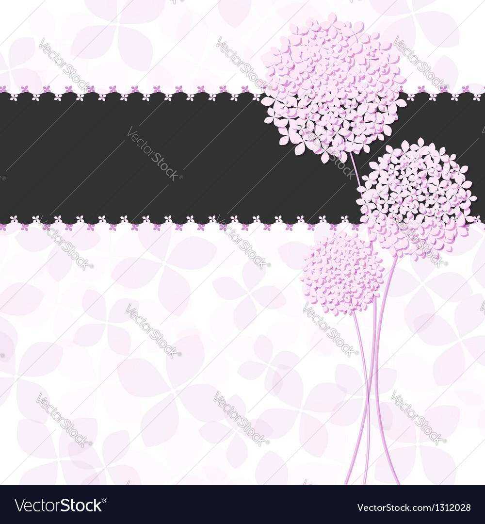 Springtime Pink Purple Hydrangea Flower vector image
