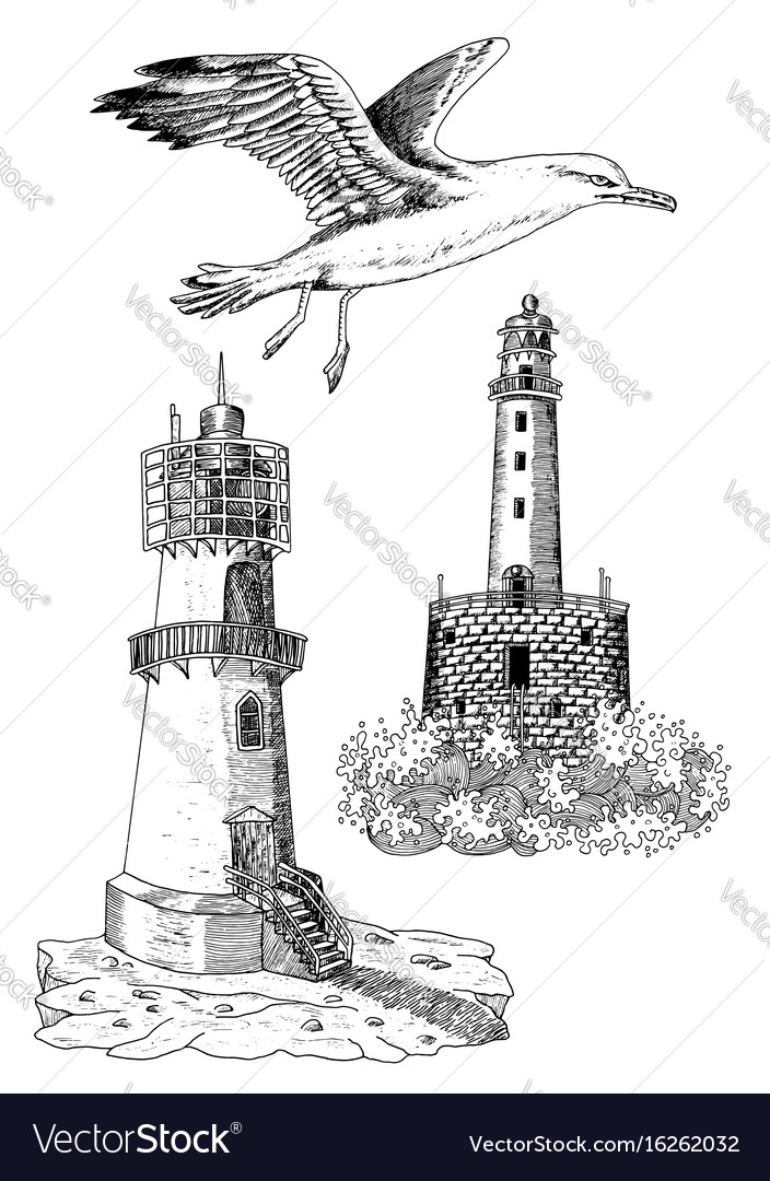 Design set with old light houses and gull vector image