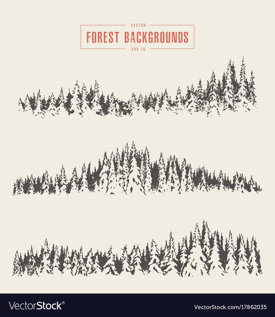 Set pine forest backgrounds drawn sketch vector image