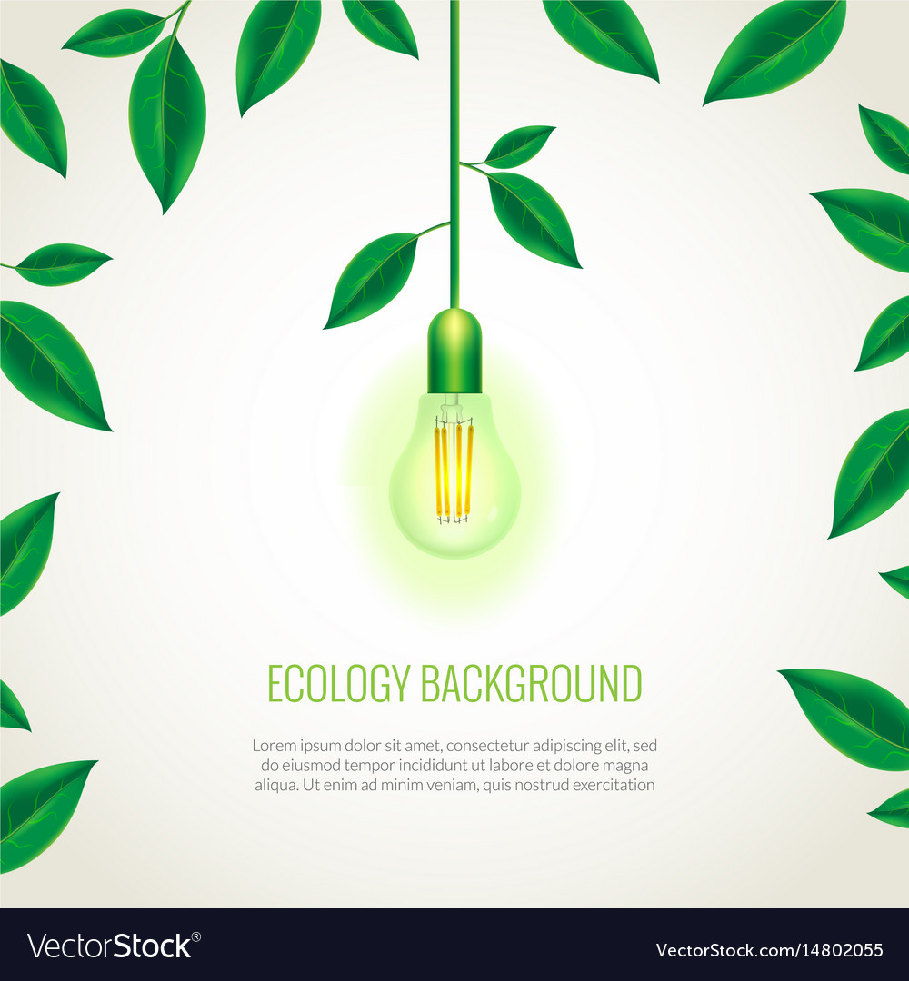 Ecology light bulb growing up vector image