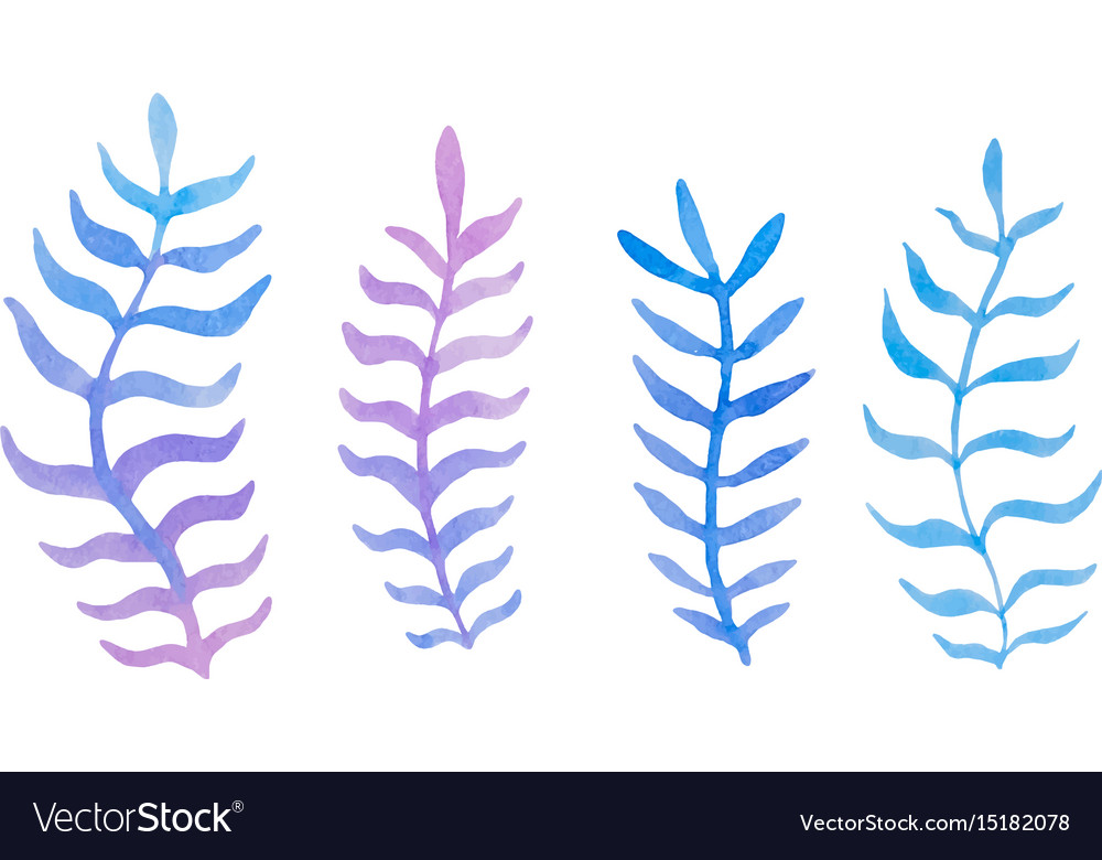Hand drawn watercolor blue twig set on the white vector image