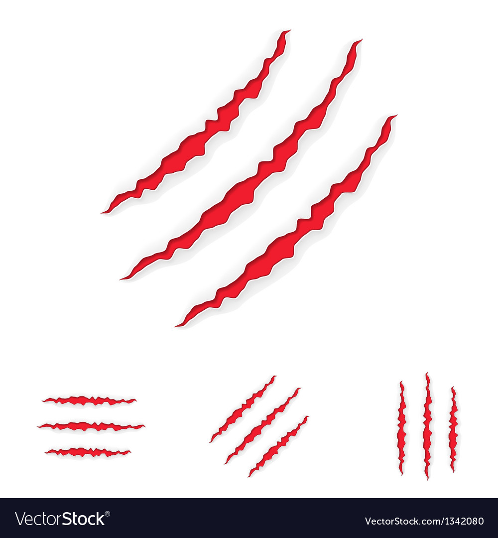 Claw Scratches Set Vector Image