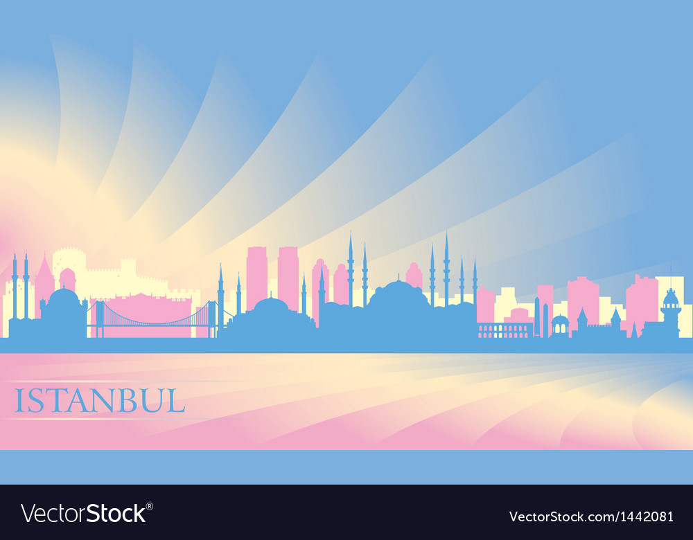 Istanbul city skyline vector image