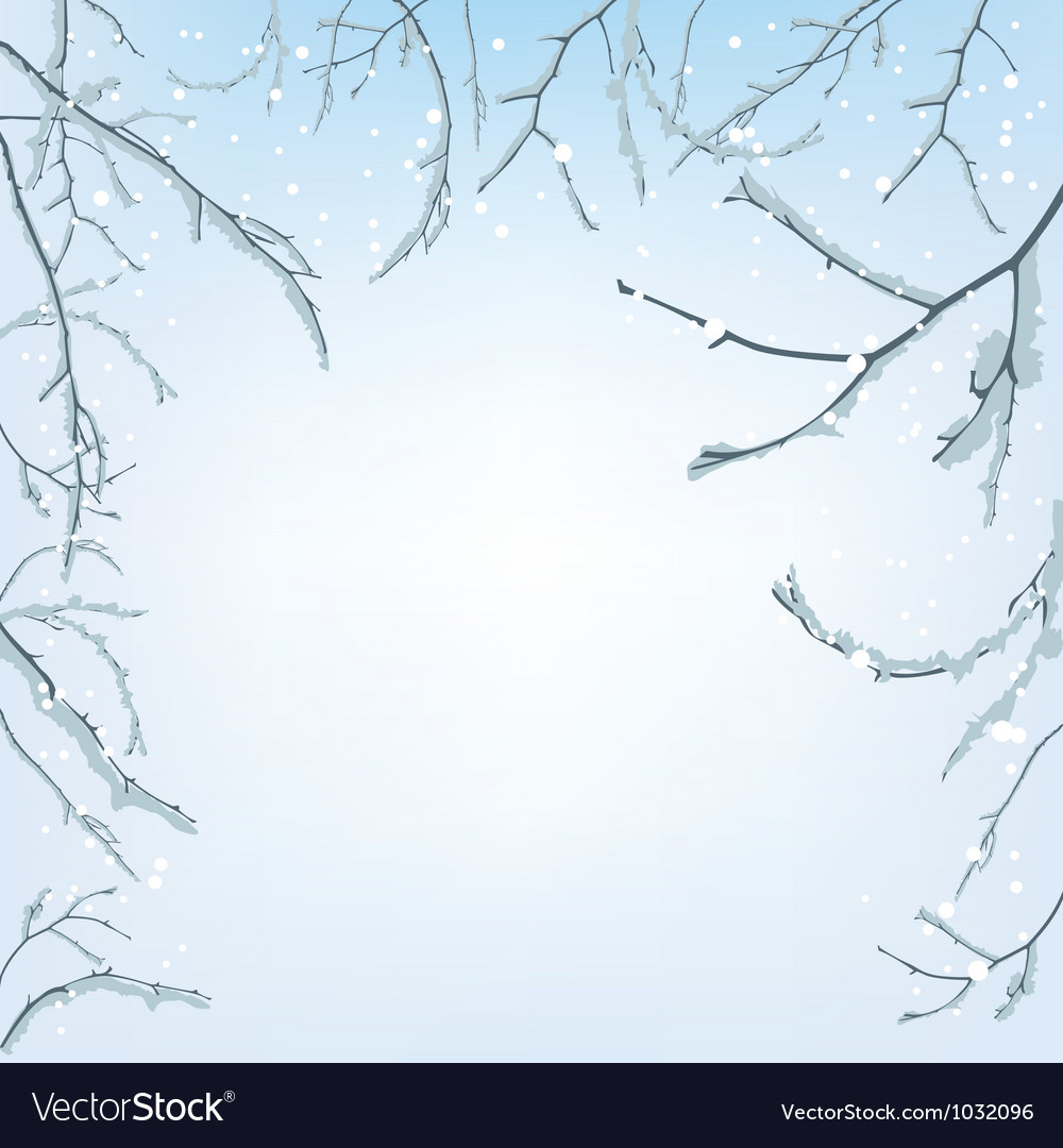 The branches of the snow vector image