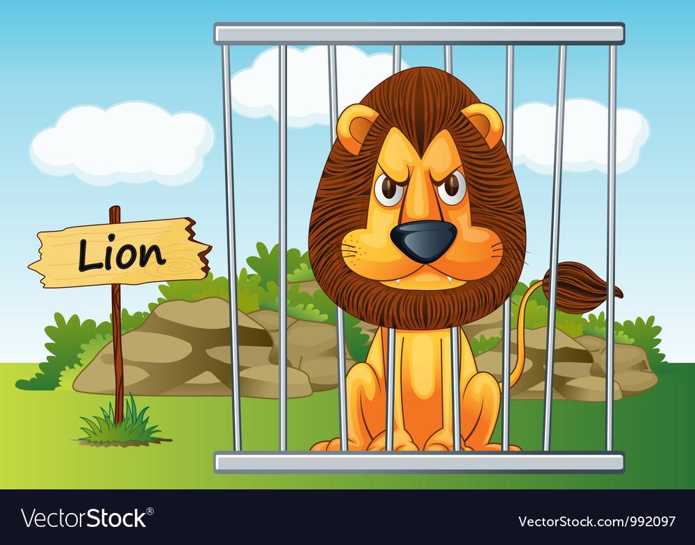 Cartoon Zoo Lion Royalty Free Vector Image