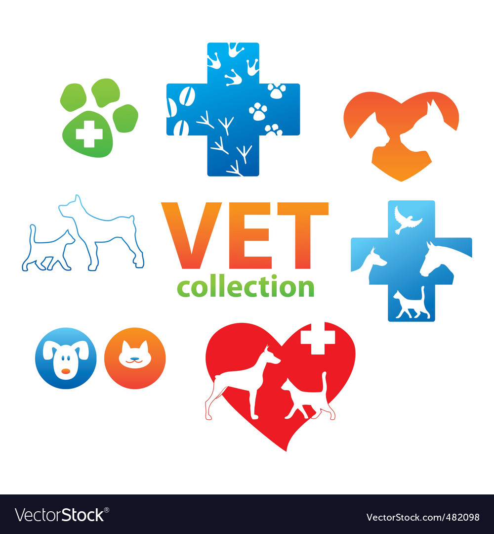 Vet collection Vector Image