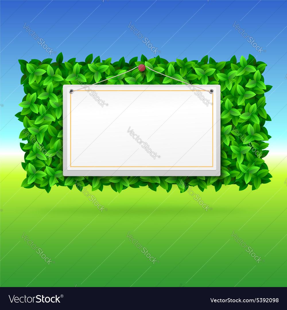 Summer background leaves vector image