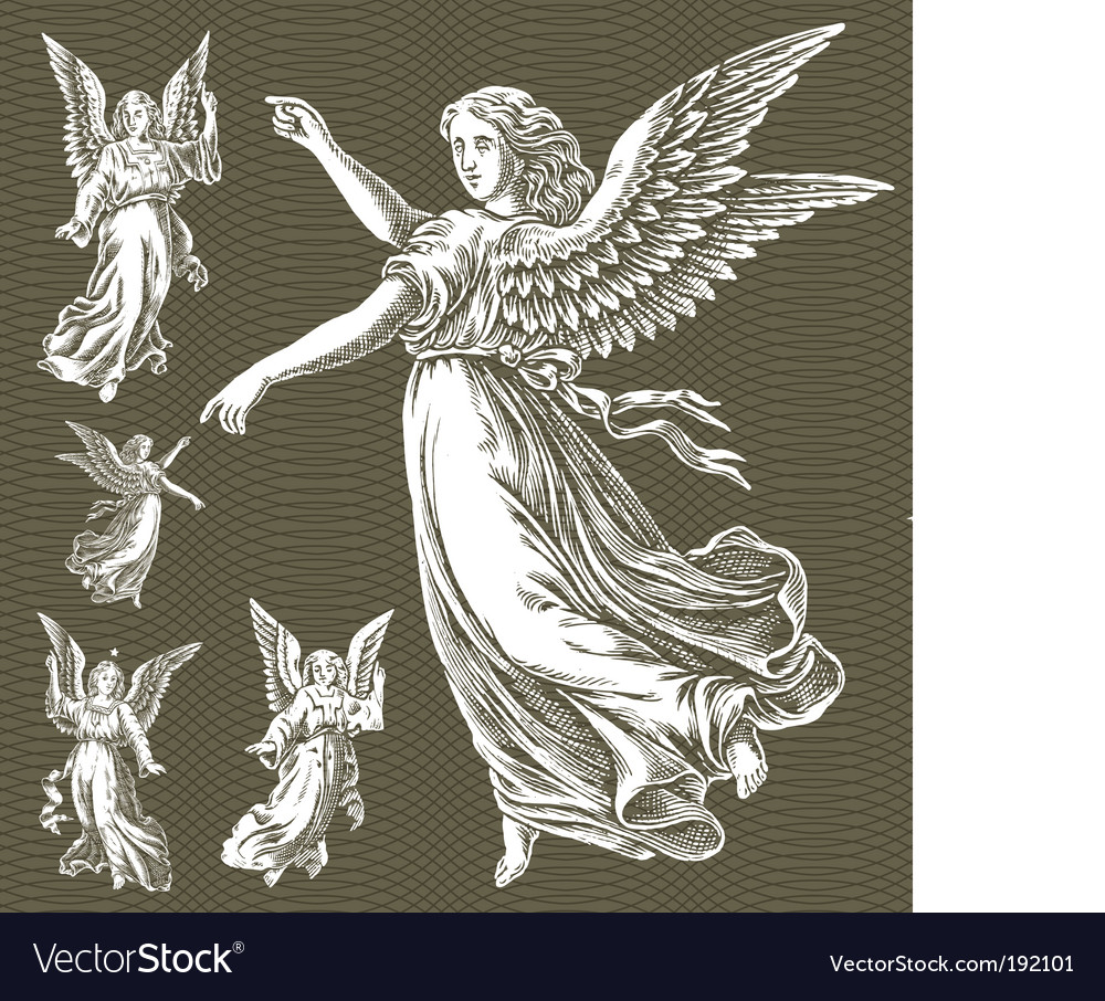 White angels vector image