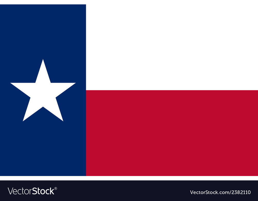Flag of Texas vector image