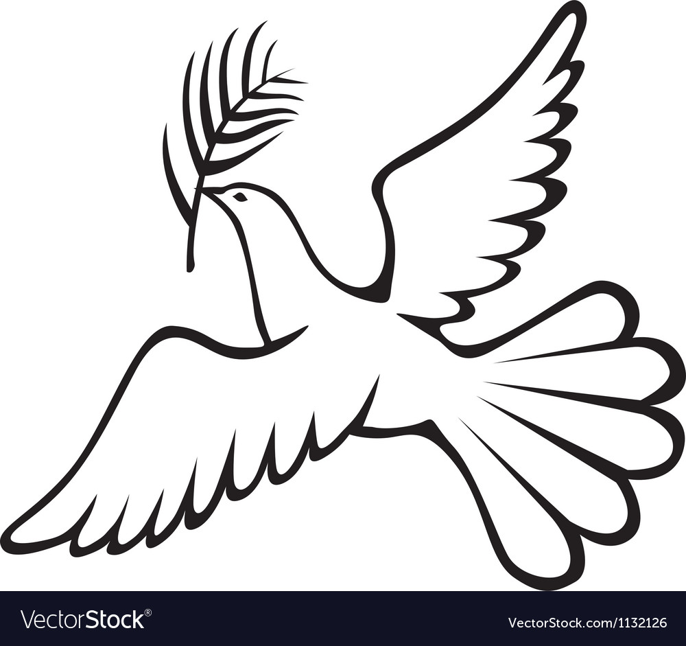 Dove with branch vector image
