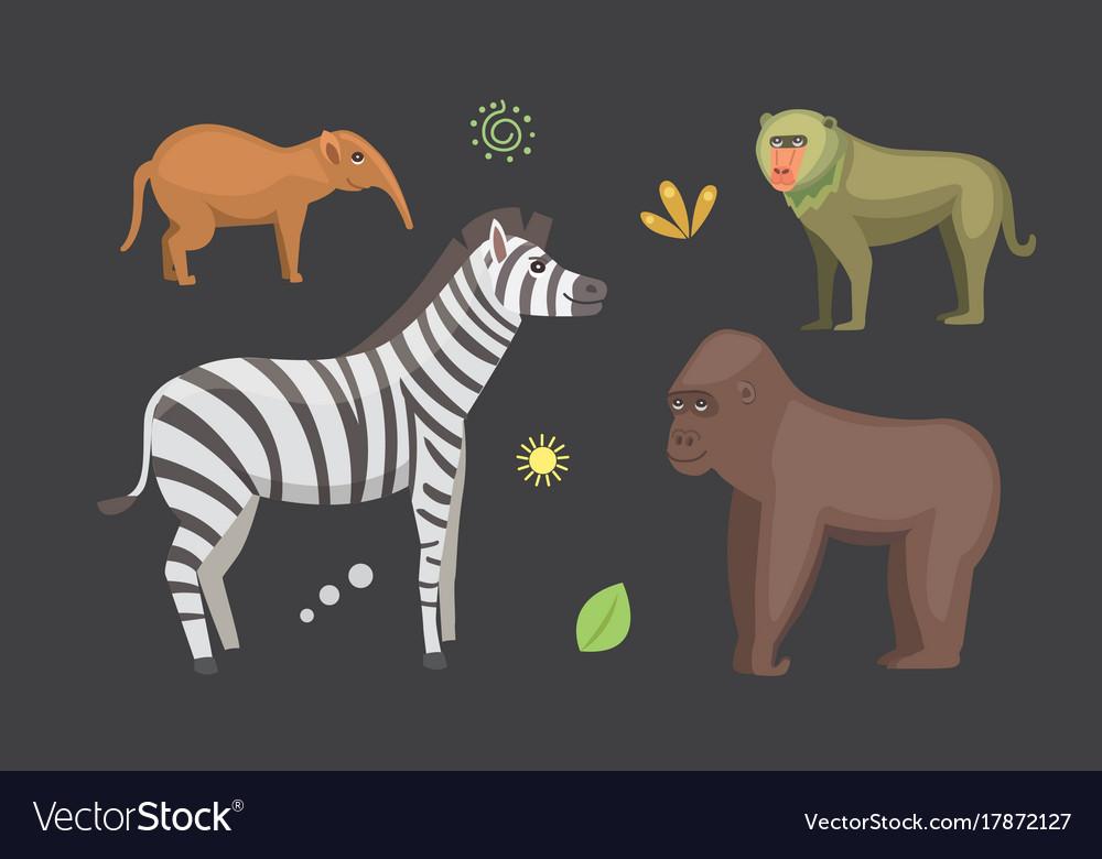 African animals cartoon set zebra hyena vector image