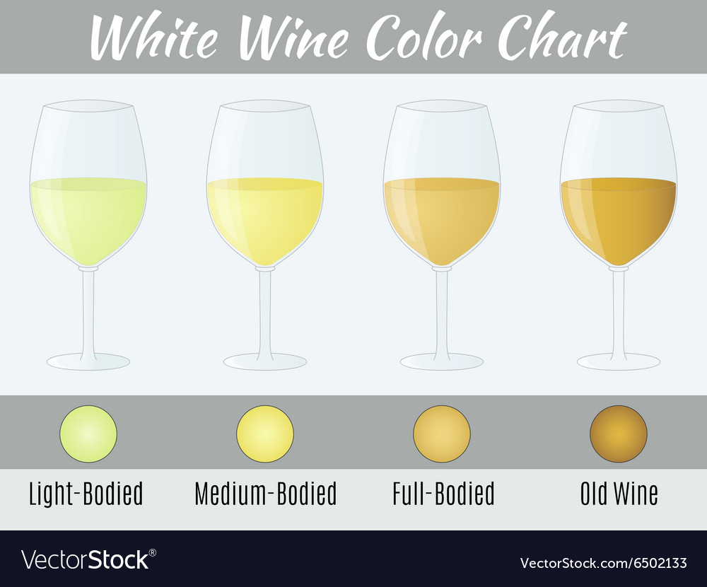 White wine color chart vector image