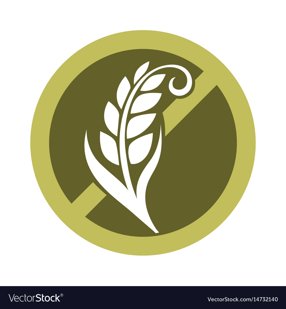 Gluten free substance in cereal grains logo in vector image