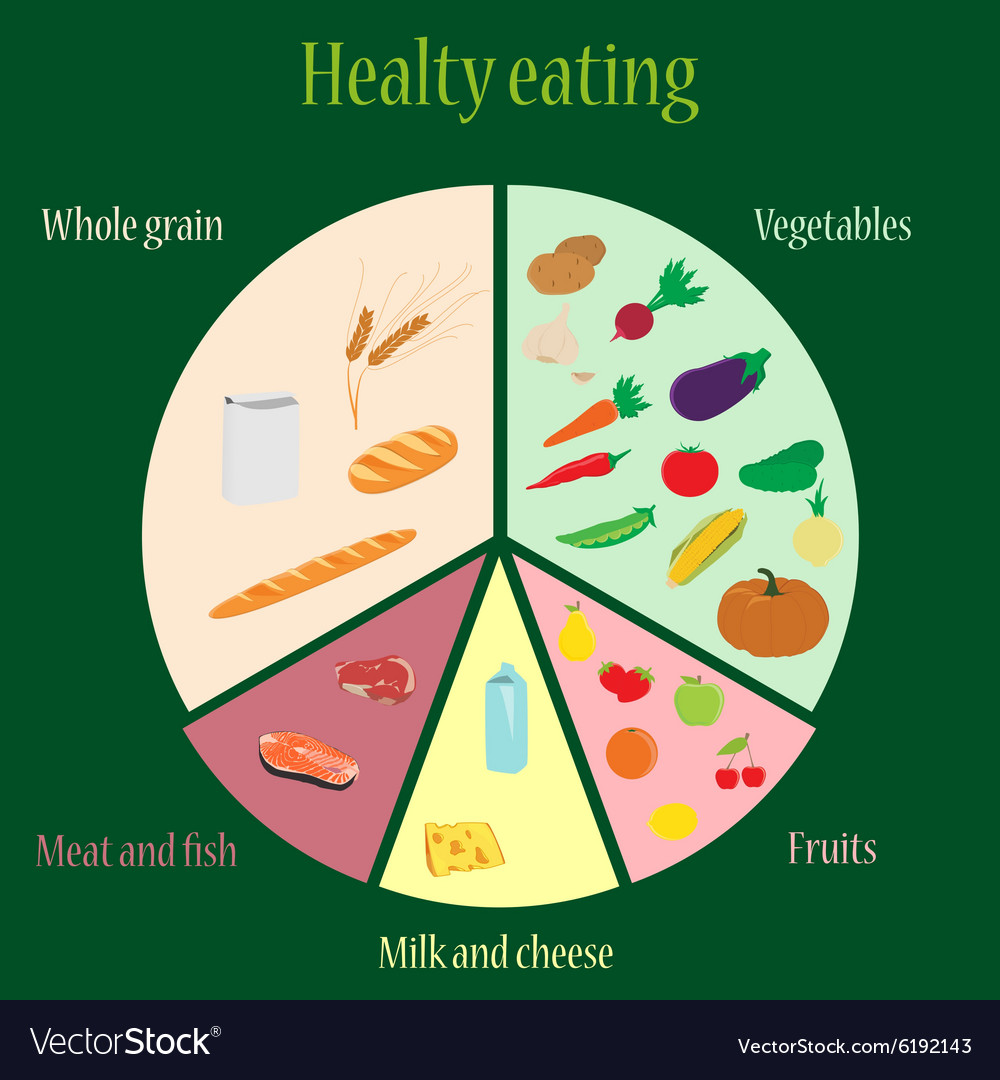 Healthy eating chart royalty free vector image