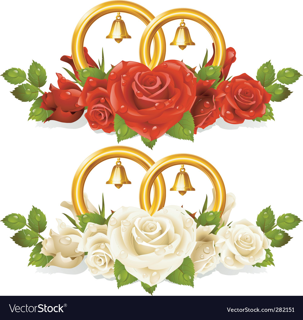Wedding rings and rose vector image